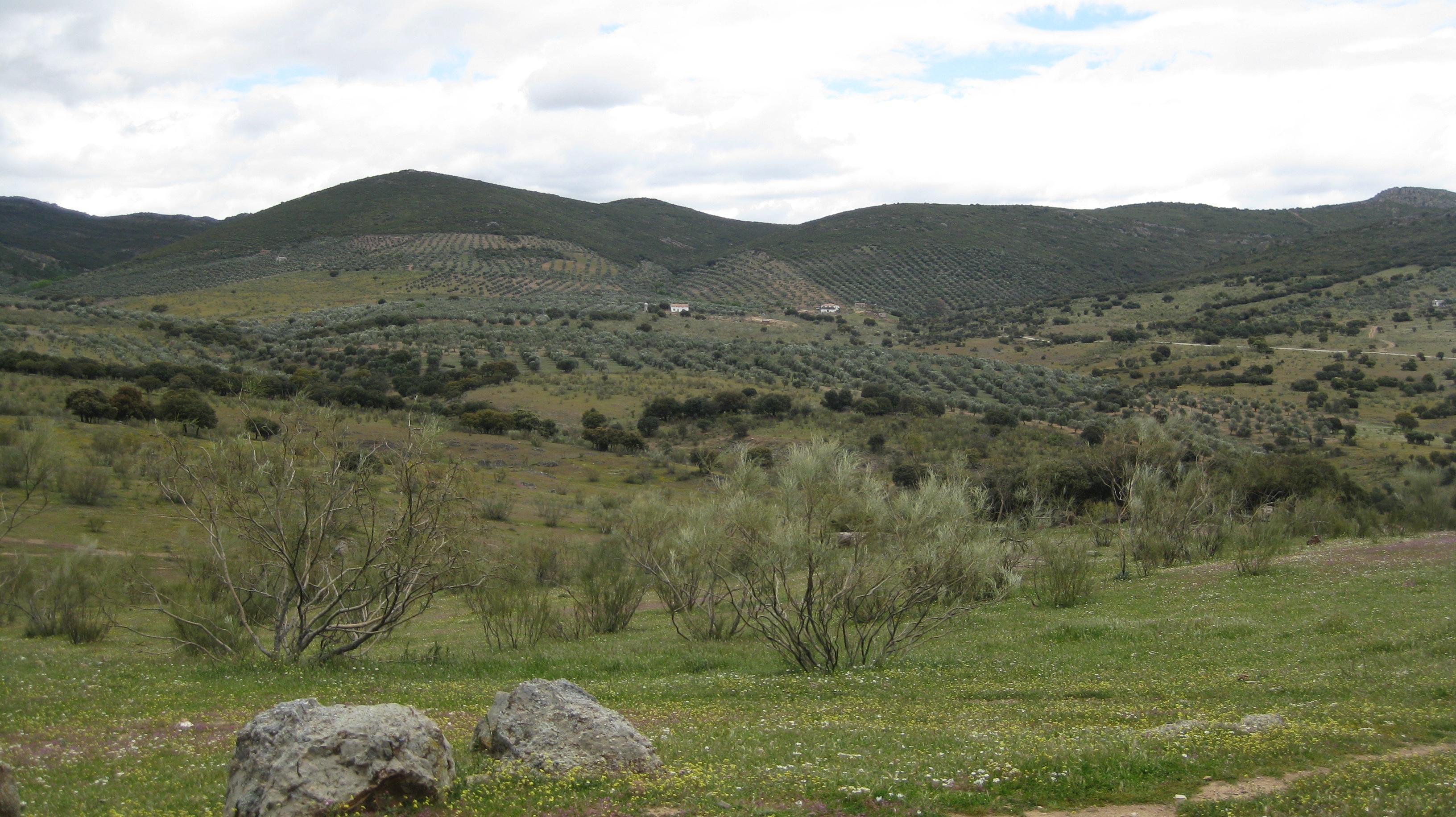 Valle de alcudia bis